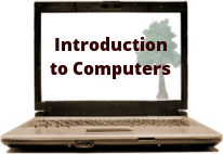 laptop with intro tree